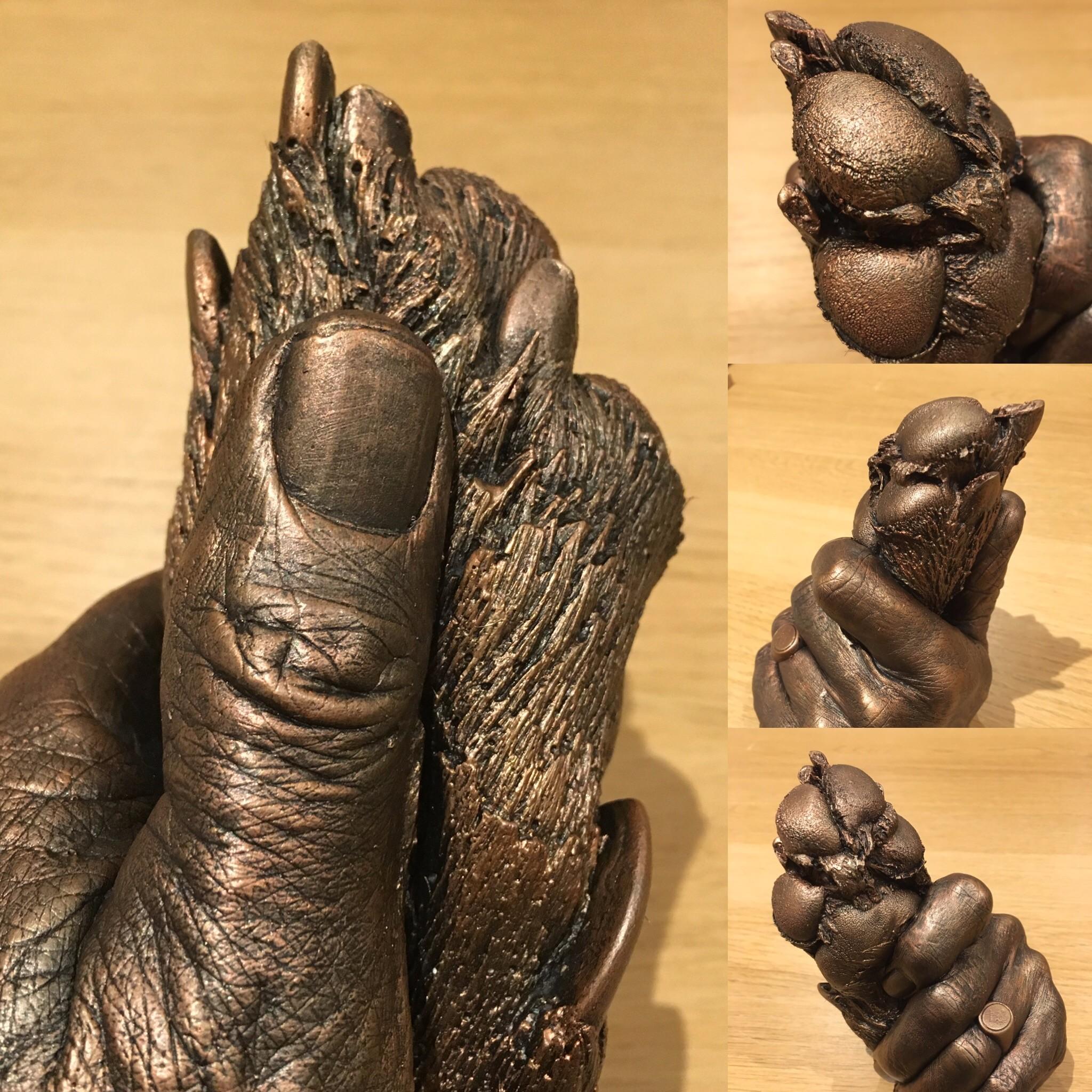 dog paw casting