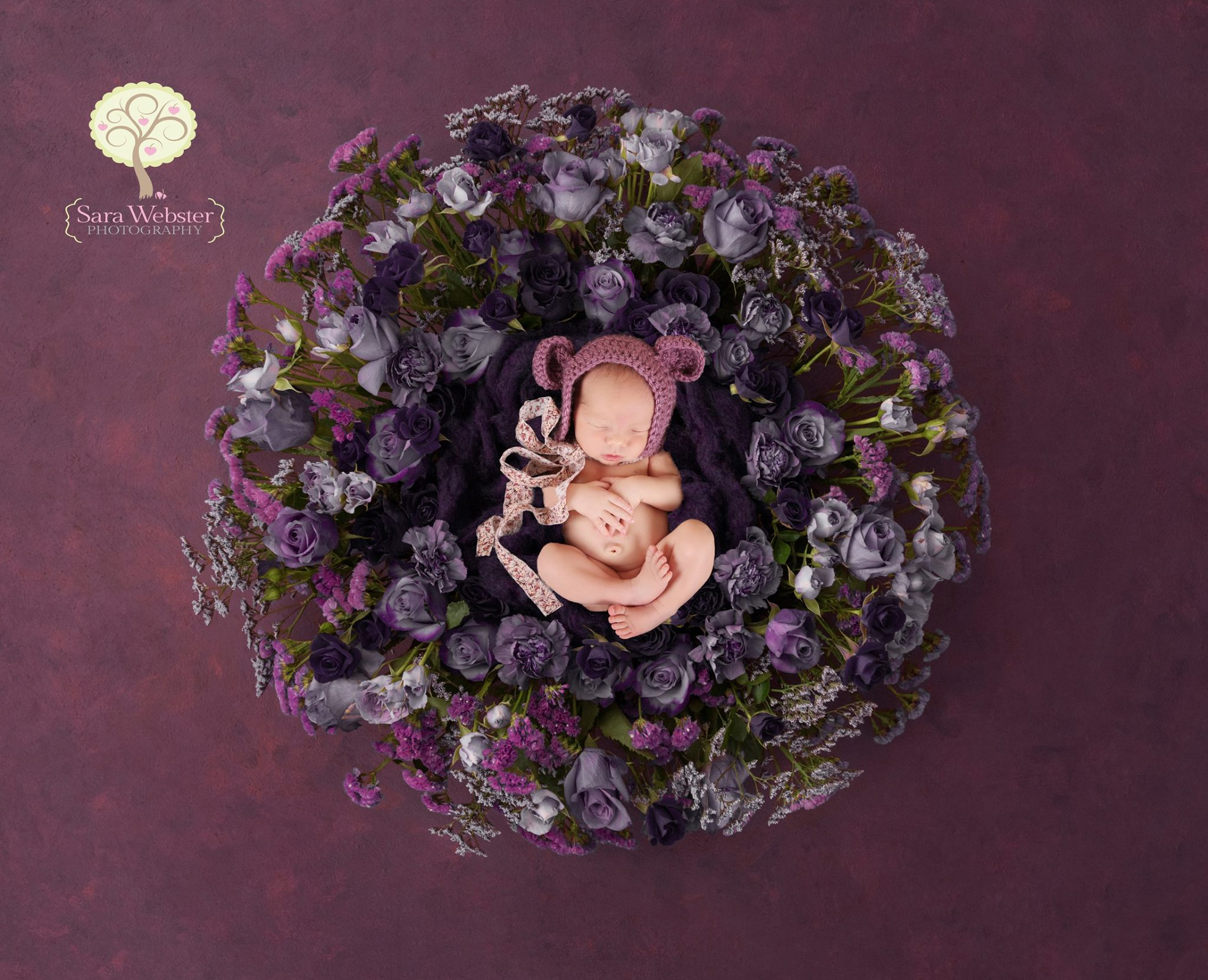 Photographing your baby 34