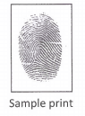 Medium Golden Fingerprint Charm (Ink Print) 1