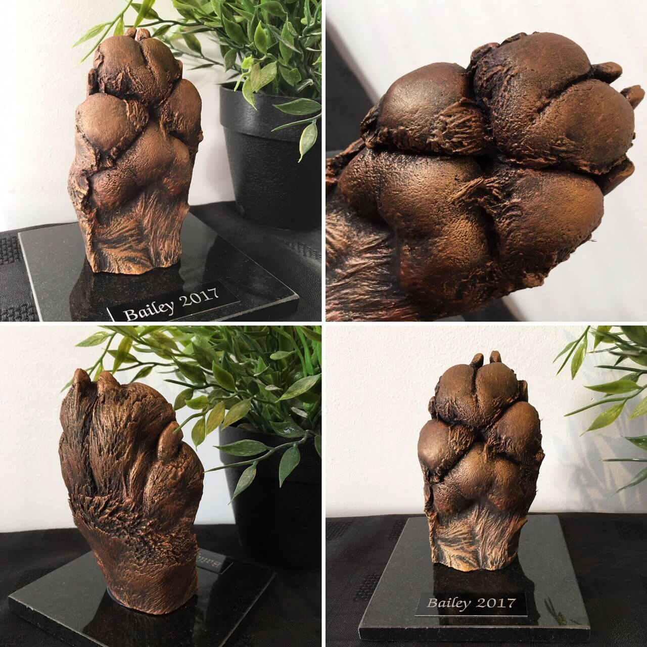 3d cast of dog paw