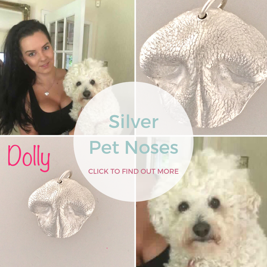your dogs nose created in solid silver