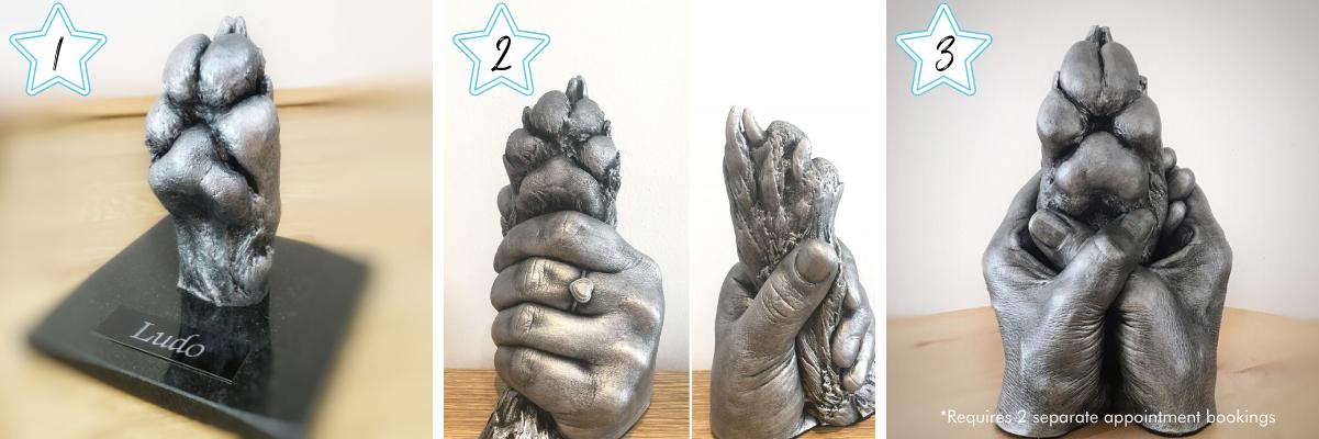 pet paw cast