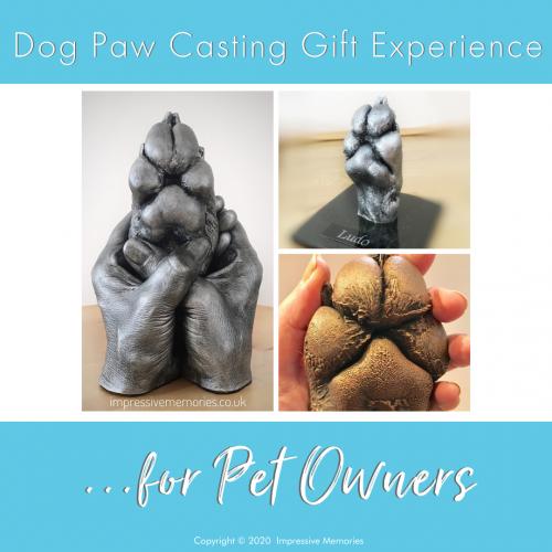 pet paw dog casting options
