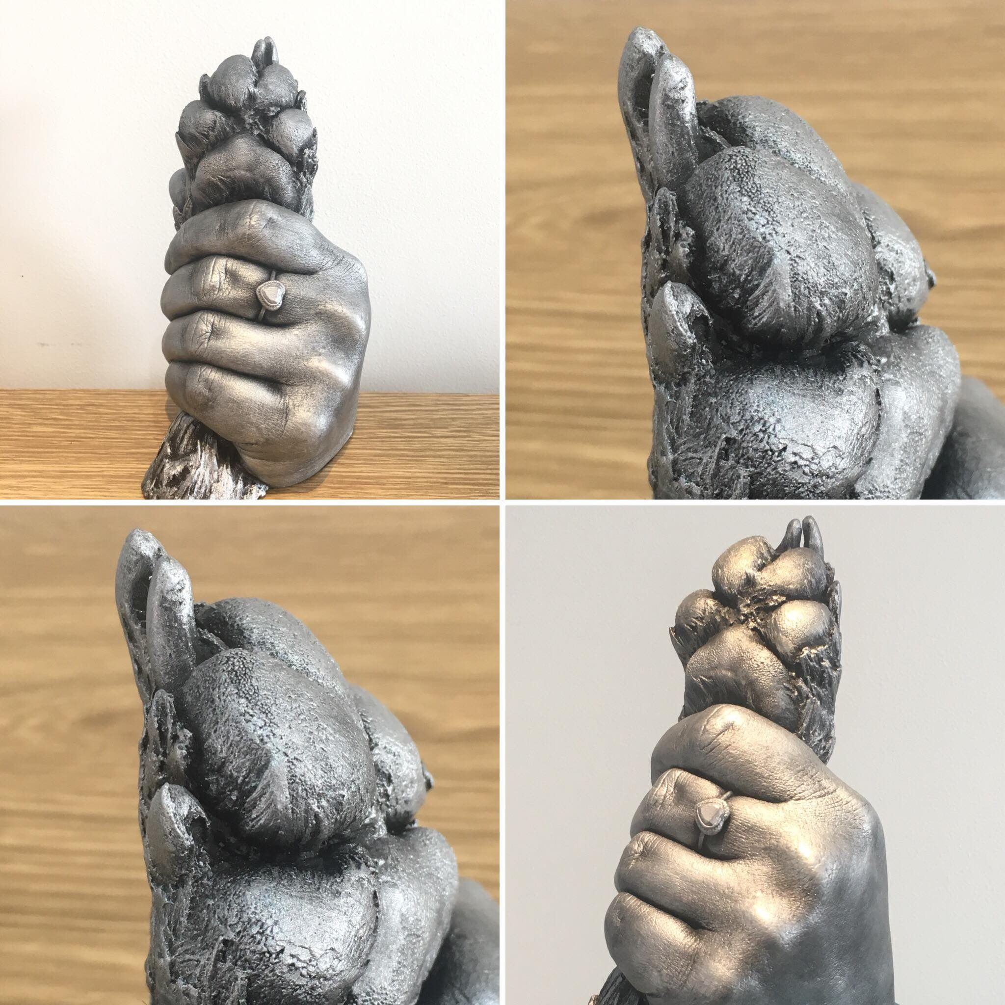 3d pet casting of dogs paw